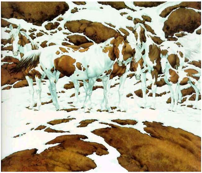 5 horses